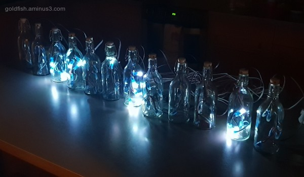 LED Light Bottles II