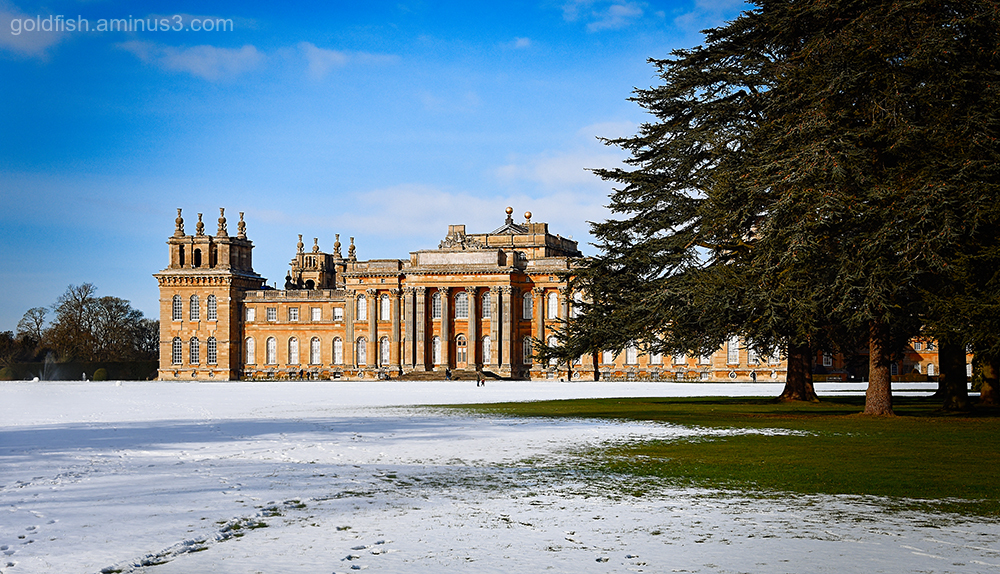 Blenheim Palace XXI