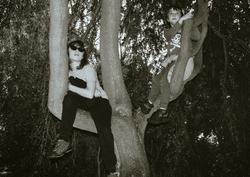 Tree People (Return Of The) II