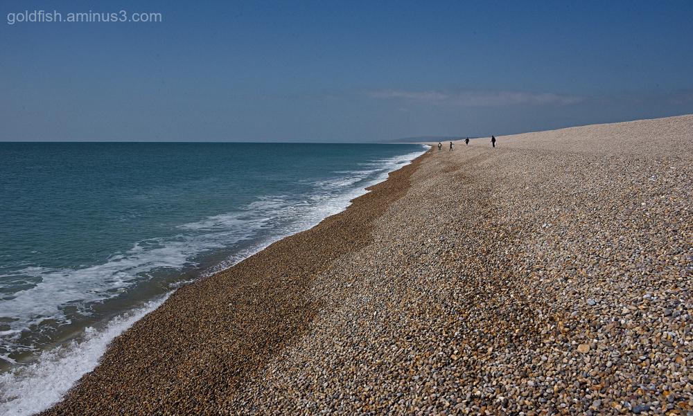 Chesil Beach VI