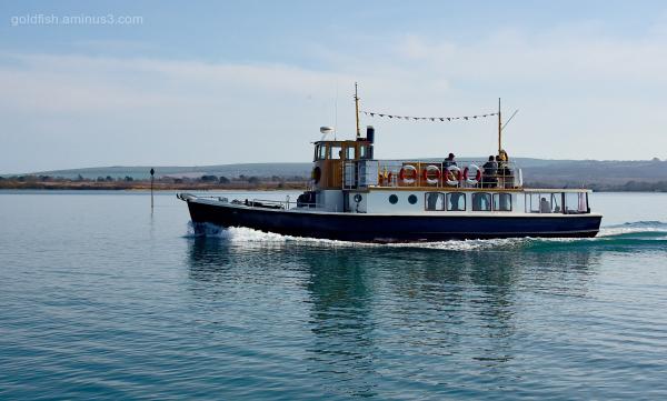 Dorset Queen