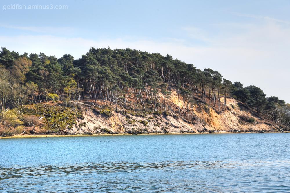 Brownsea Island II