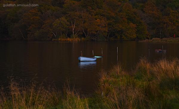 Golden Hour in Llanberis VII