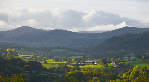 View from Conwy YHA II