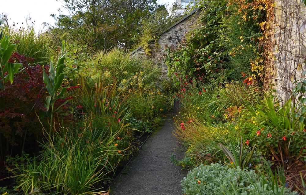 Bodnant Gardens III