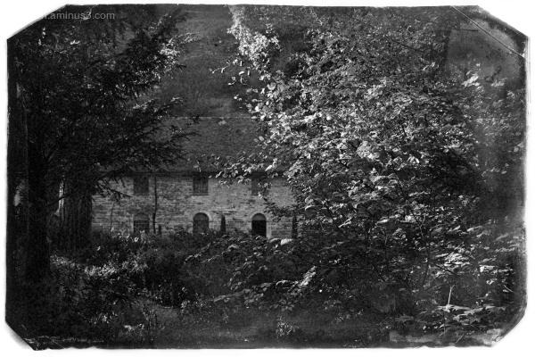 Bodnant Gardens XI