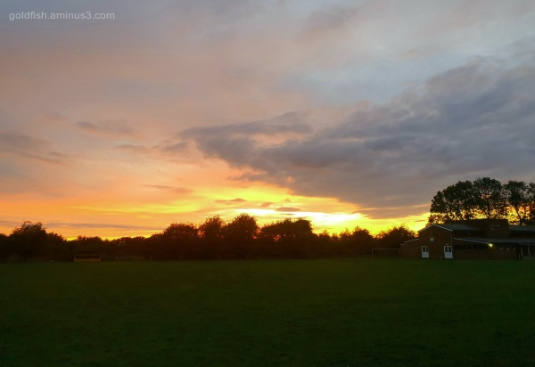 Drayton Sunset
