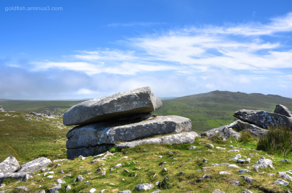 Roughtor and Brown Willy XI