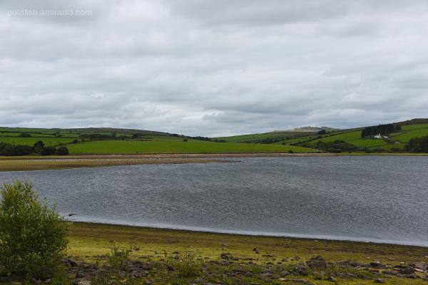 Siblyback Lake VII
