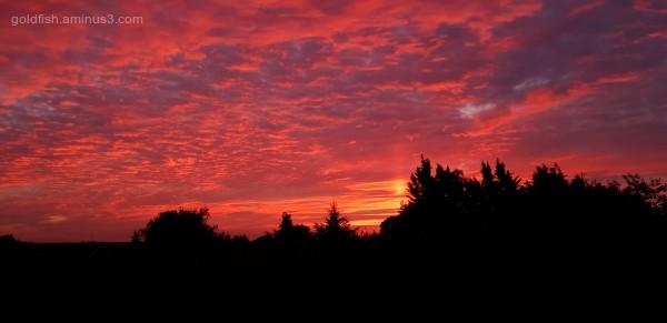Sunset III