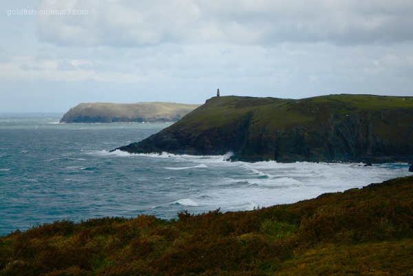 Stepper Point & Pentire Point