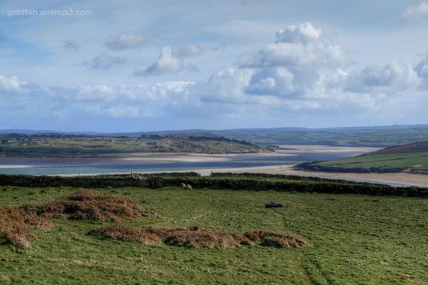 Camel Estuary