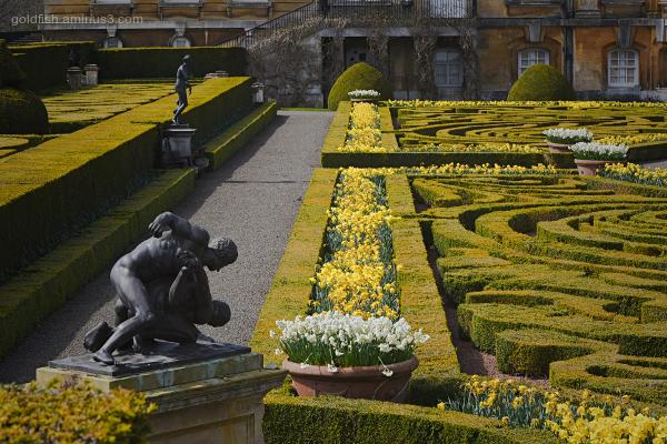 Blenheim Palace - Italian Garden II
