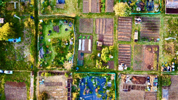 Allotment from high
