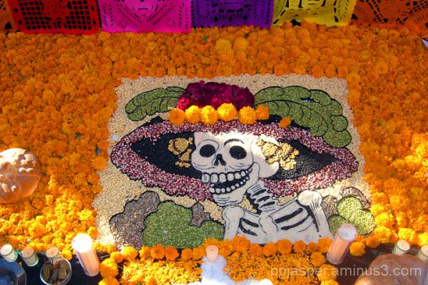 Dia de Los Muertos Legume Art  - San Miguel A.