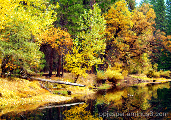 Fall Scene - Merced River, Yosemite