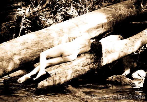Nude Prone on Log