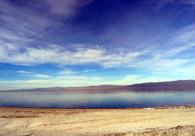 Salton Sea Scene