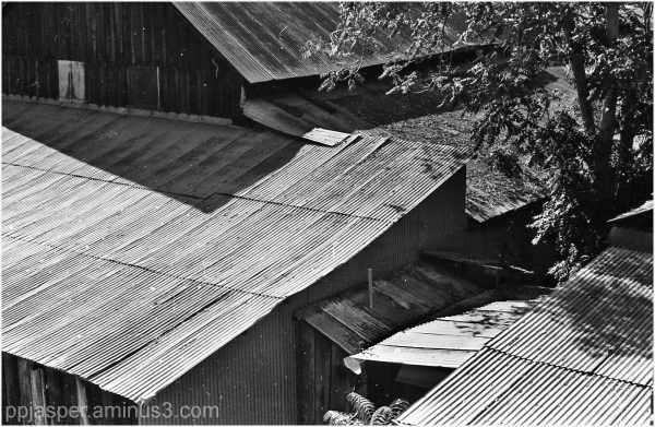 Tin Roofs - Jamestown CA