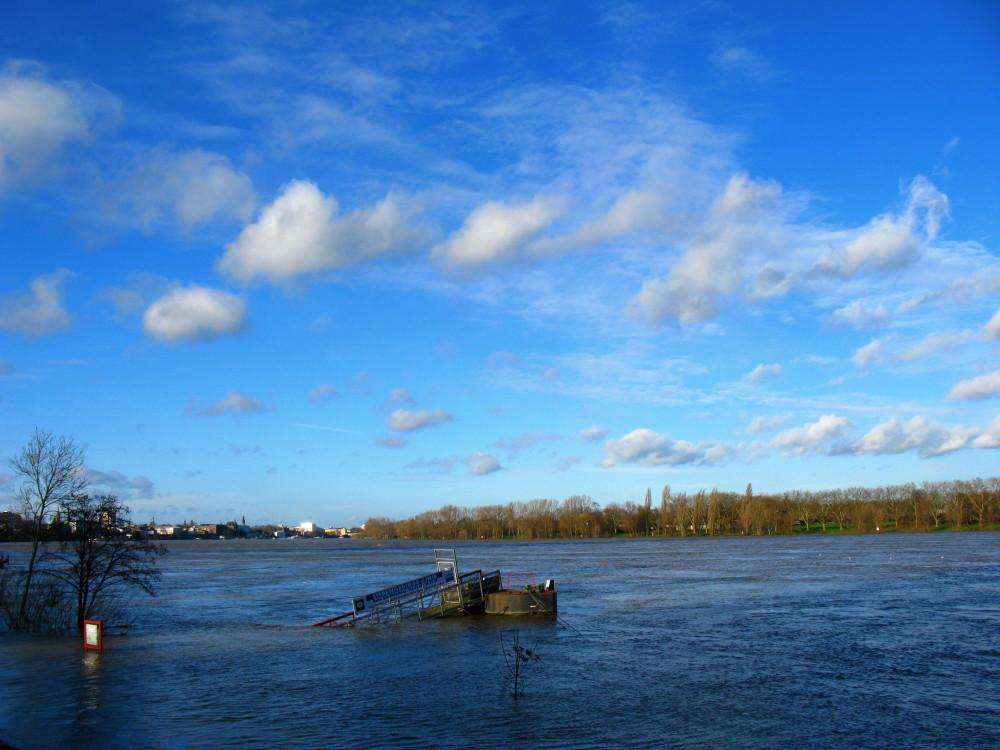 Flooded Rhine