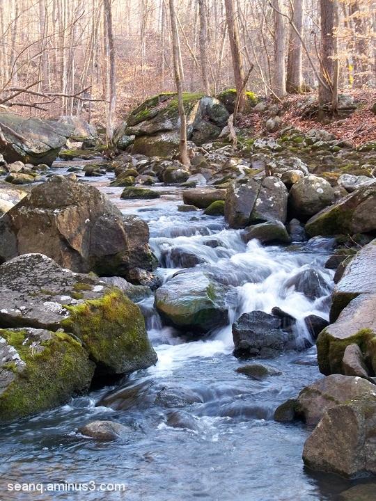 Ridge Valley Creek