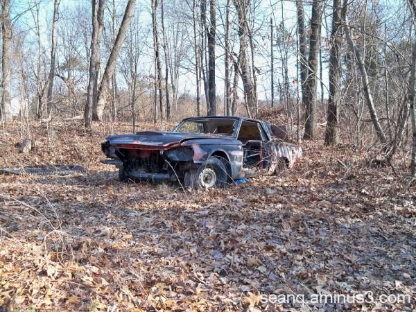 Thunderbird For Sale (not running)