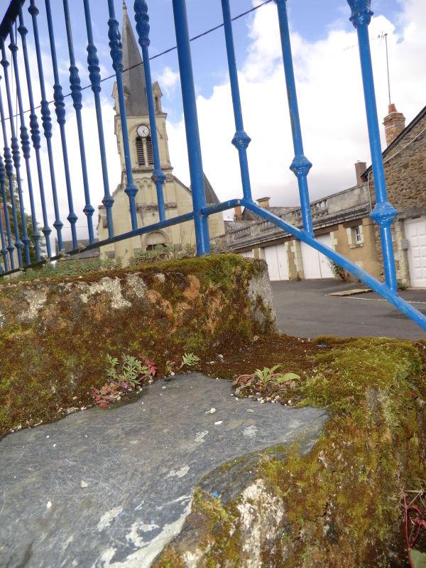 église de Pruniers