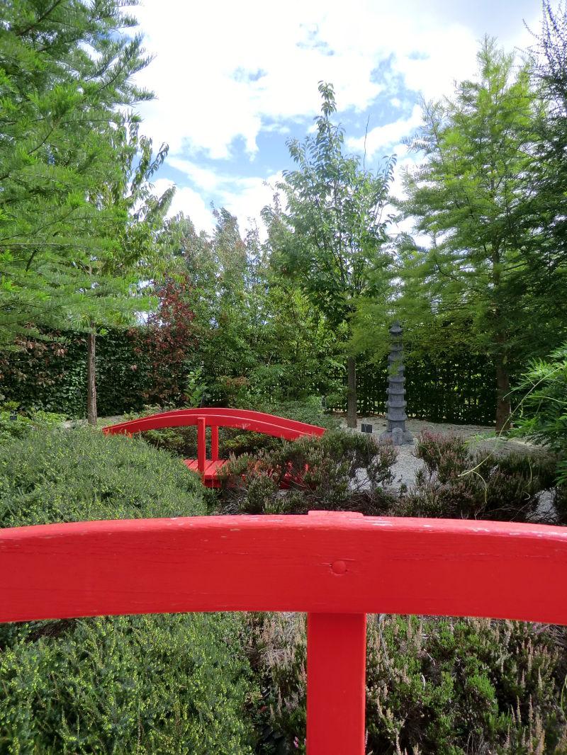Le jardin japonais plant nature photos vers le for Jardin japonais angers