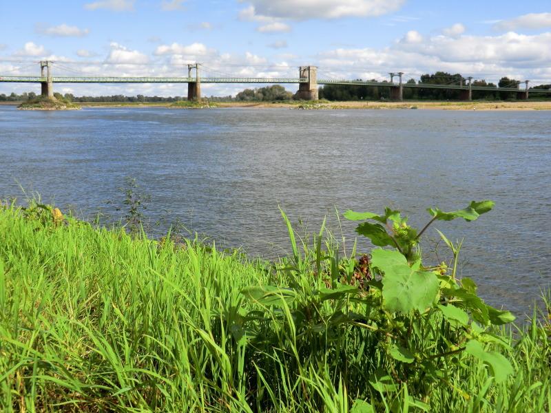 La Cale du port à Ingrandes-sur-Loire