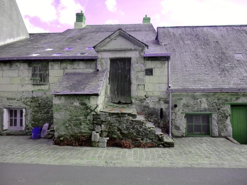 Maison naine à Ingrandes-sur-Loire