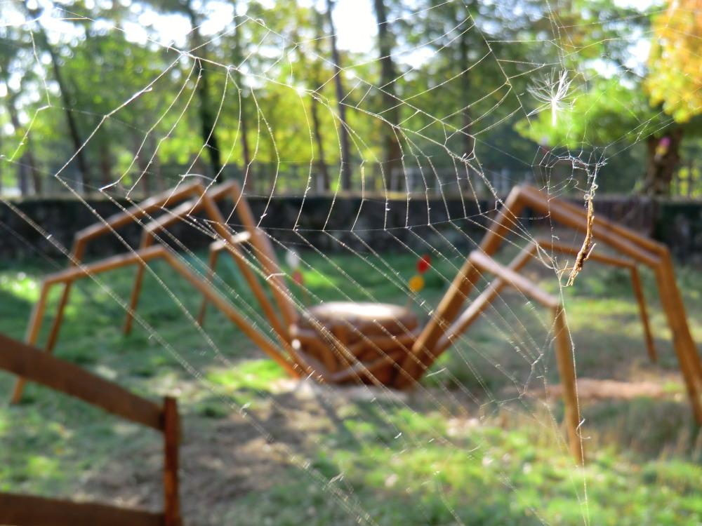 L'araignée géante au Mondial du Lion