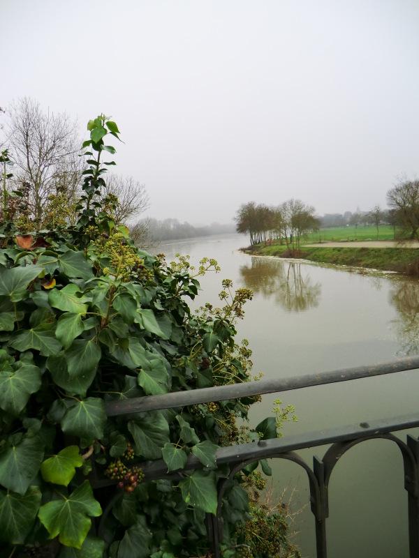 La confluence de l'Authion et de la Loire