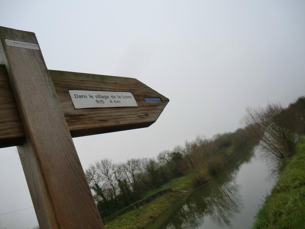 Dans le sillage de la Loire