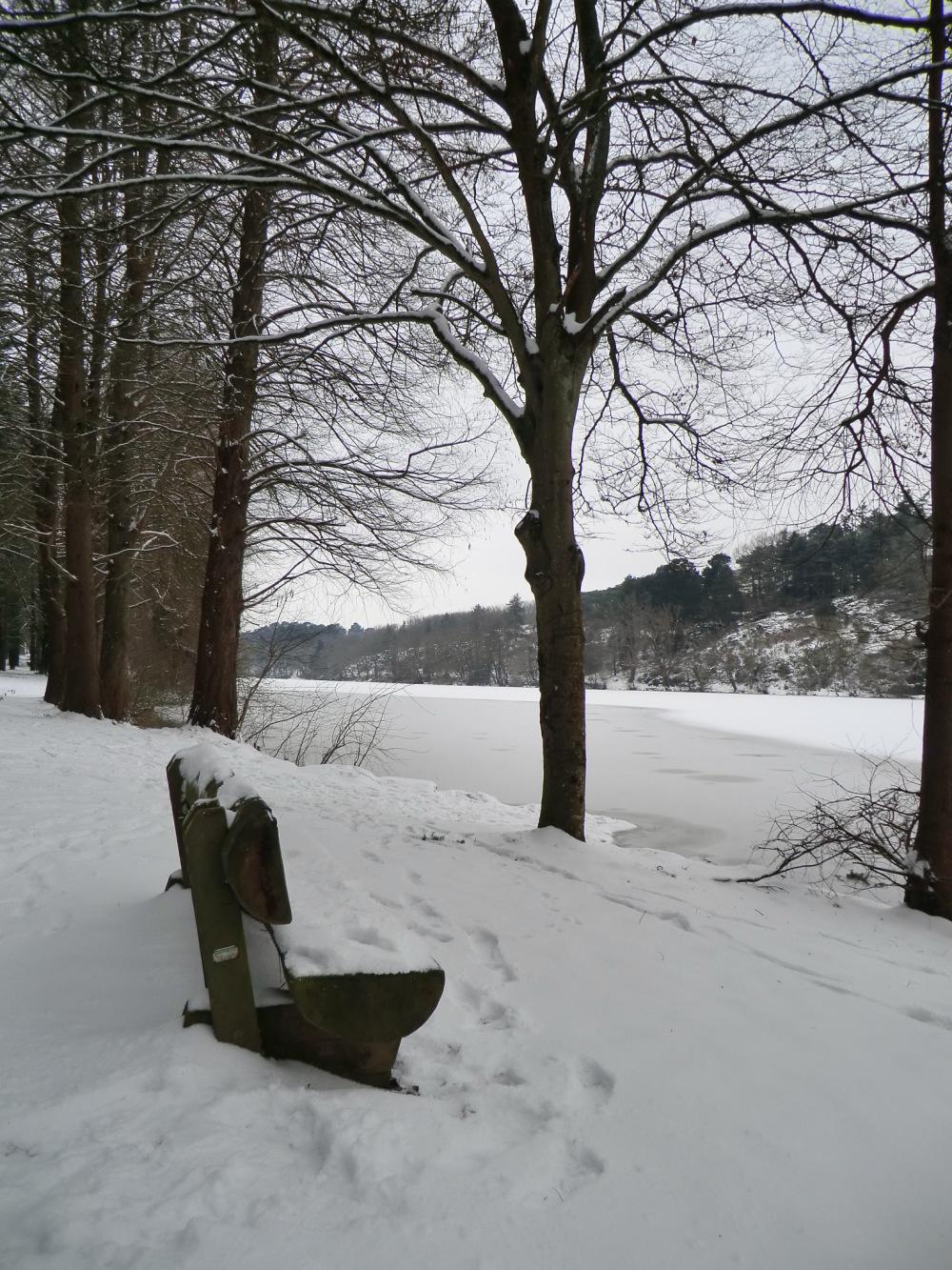 Sentier enneigé à l'étang Saint-Nicolas