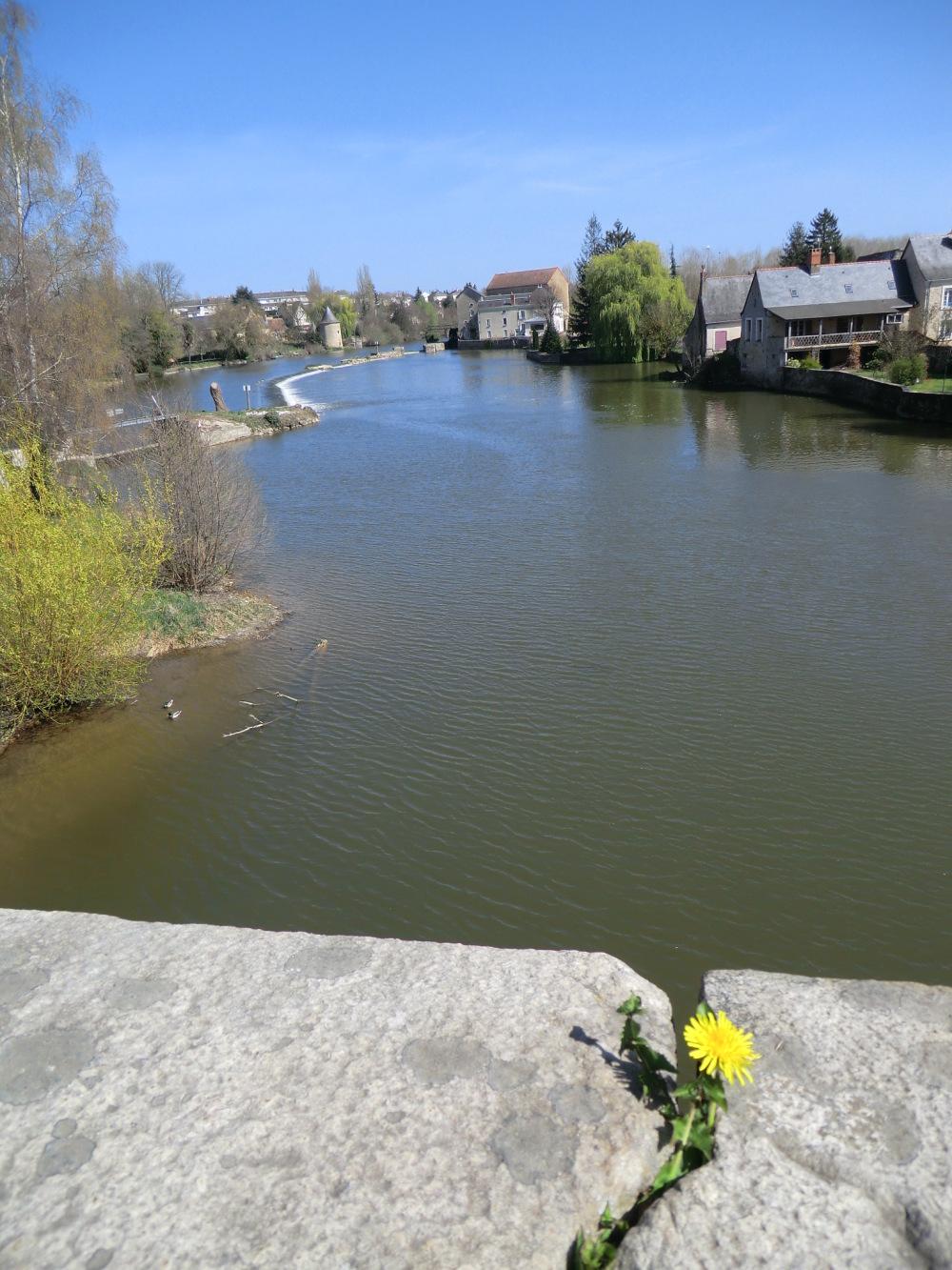 Fissure végétale du Pont de Durtal