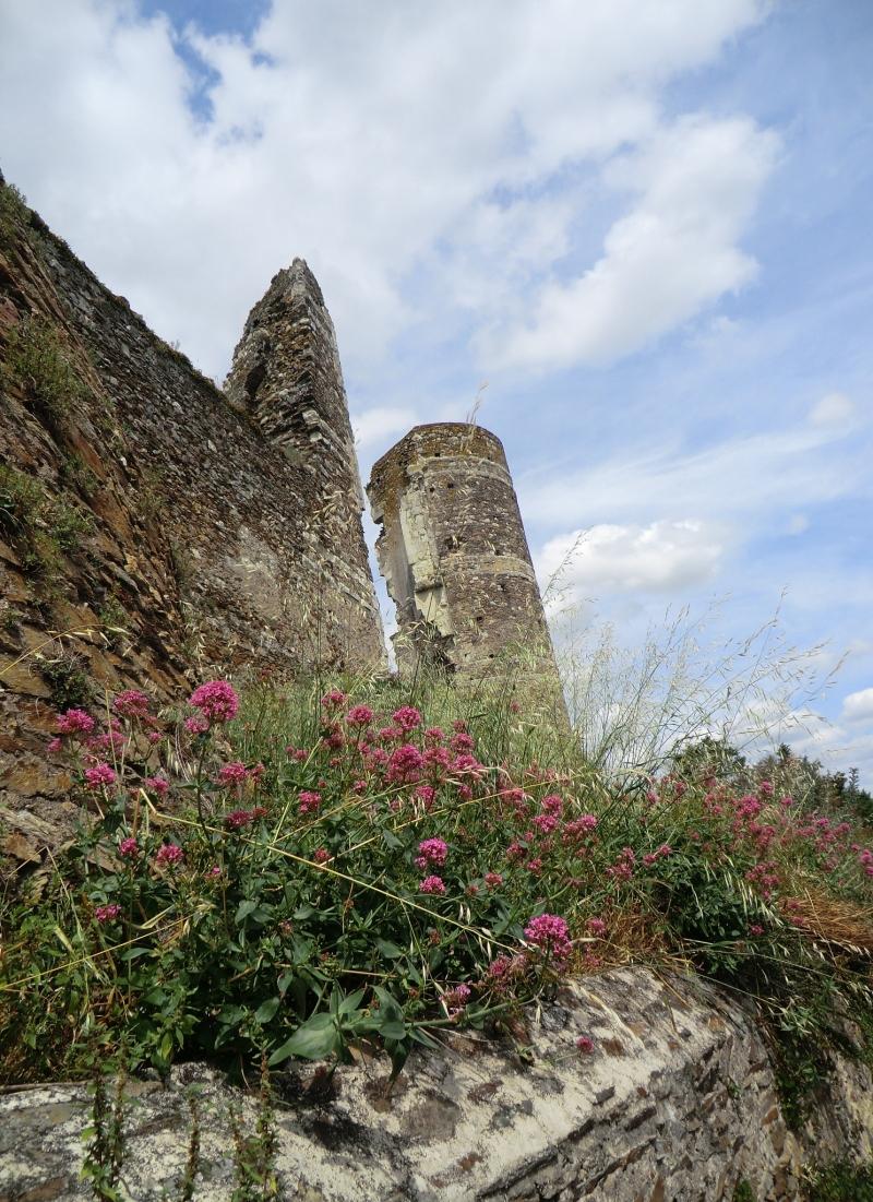 Les pierres fleurissent au château Gilles de Rais