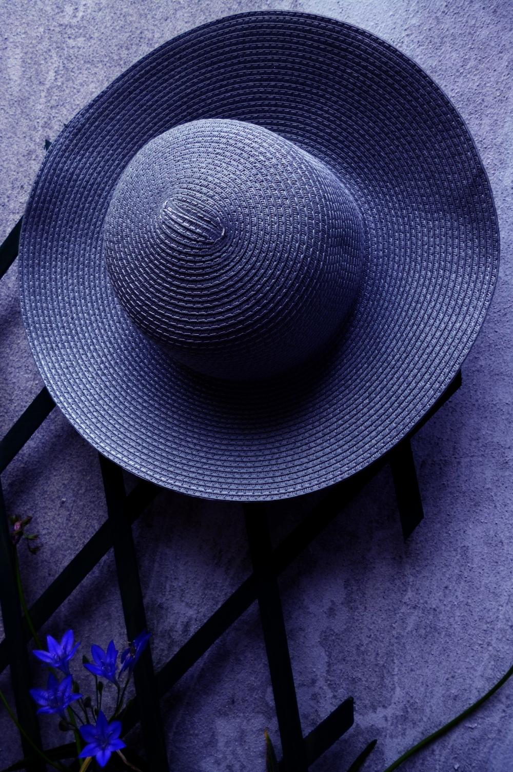 Le chapeau brodiaea bleu....