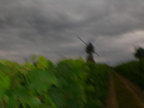Le moulin noir fauche les vignes...