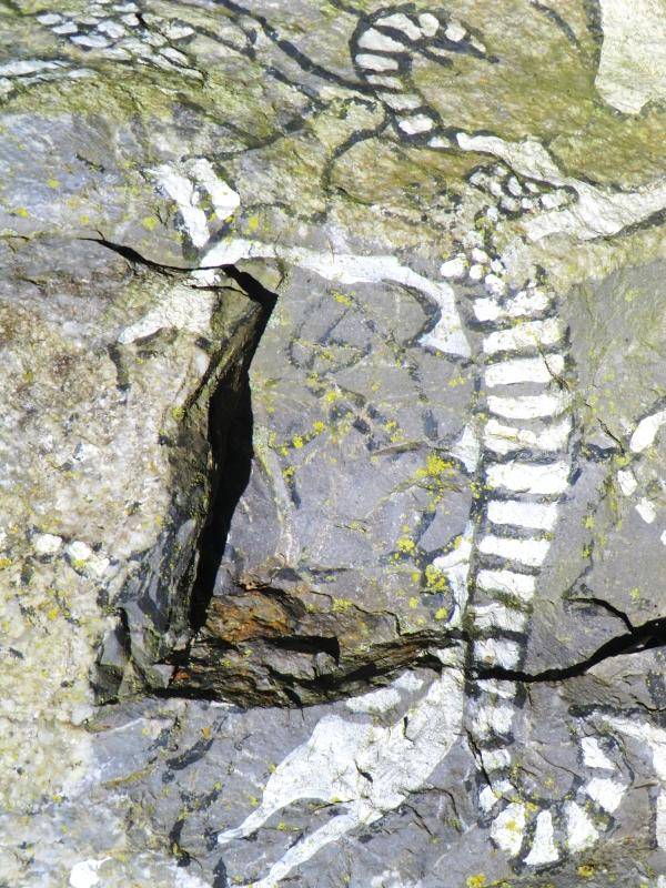 Rampant la rocaille,l'anguille frétille le courant