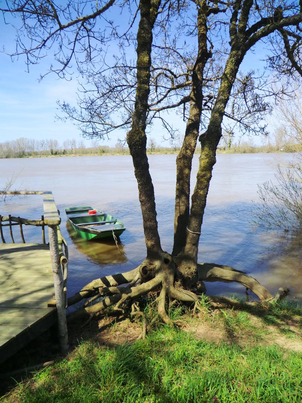 Attachée à la racine de la Loire....