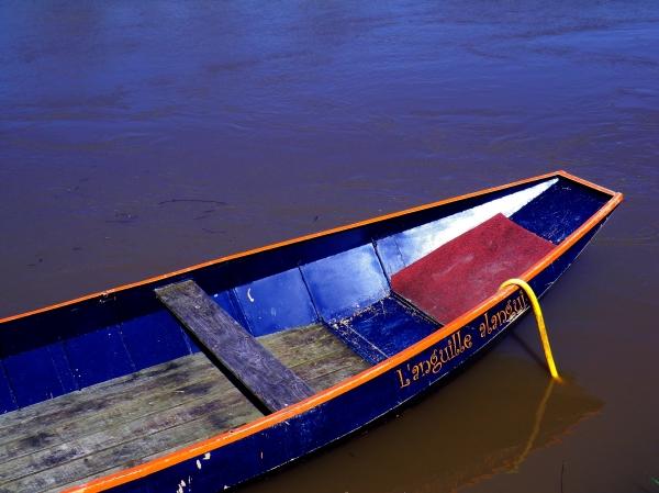 L'anguille jaune se glisse sur sa barque douce