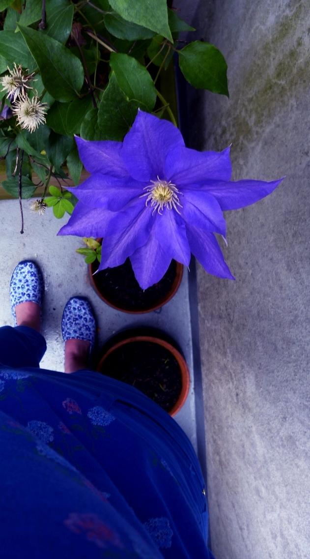 Aux pas des espadrilles fleuries,mon instant bleu