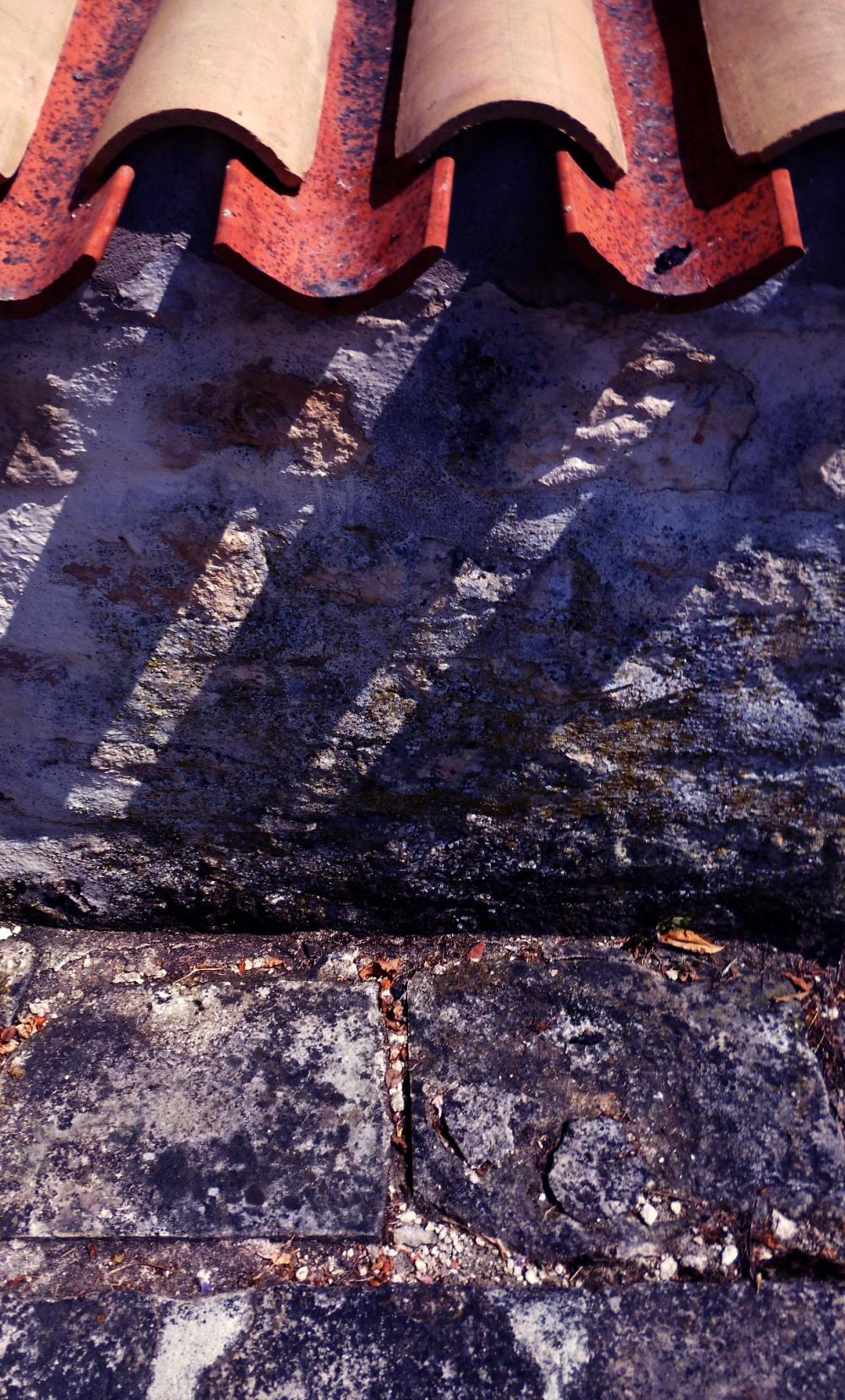 Chercher de l'ombre au toit du muret de tuiles