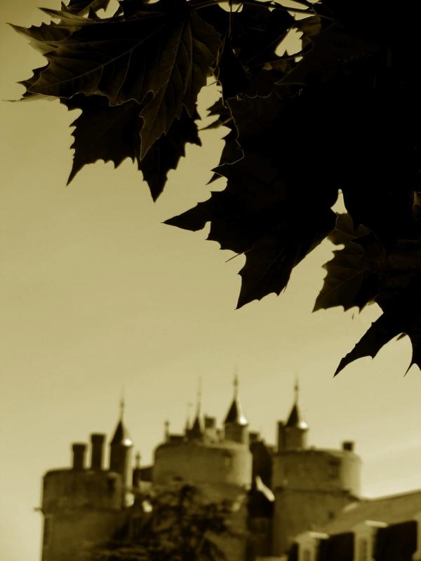 S'envole la couronne de la Reine d'Anjou...