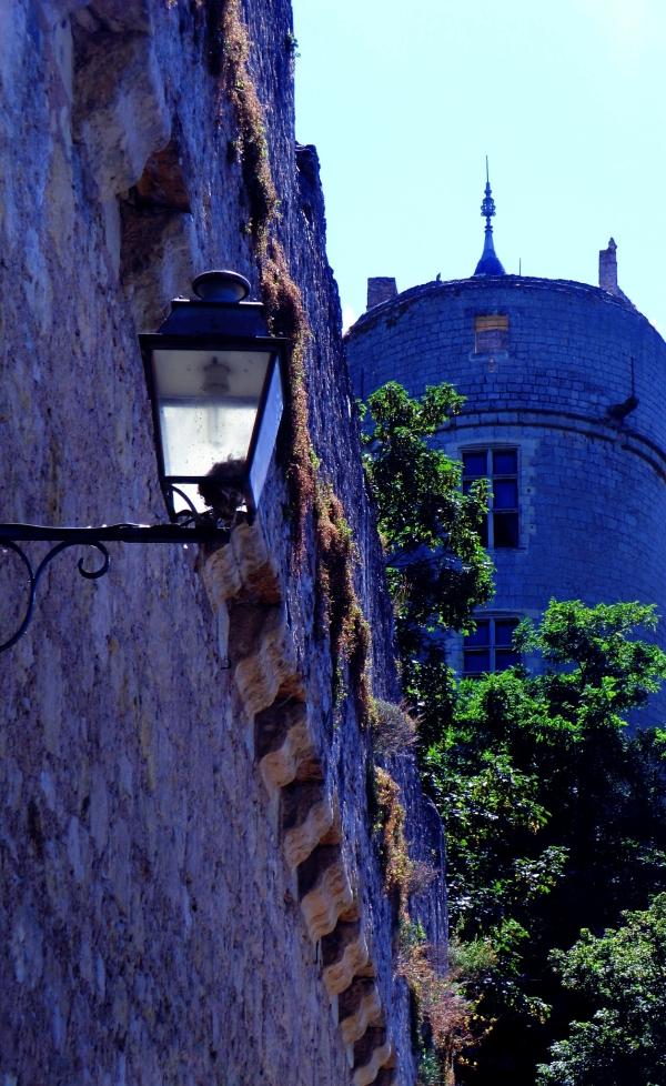 Le nid royal à la couvée de la lumière de la tour