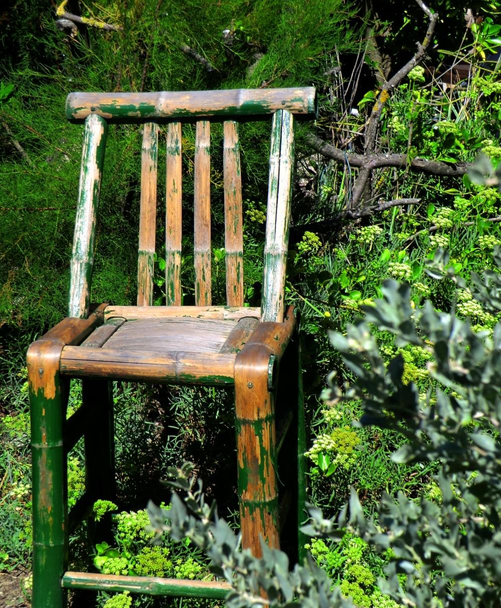 S'asseoir au pied du tronc où le rondin roussit...