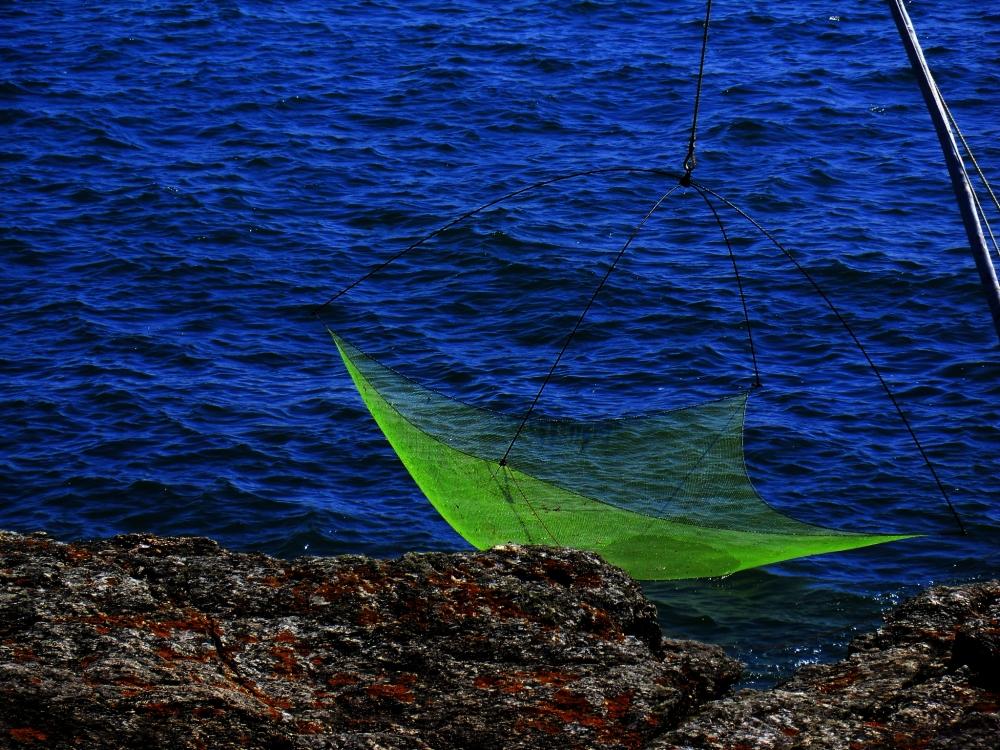 L'épuisette a attrapé le scintillement de l'Océan