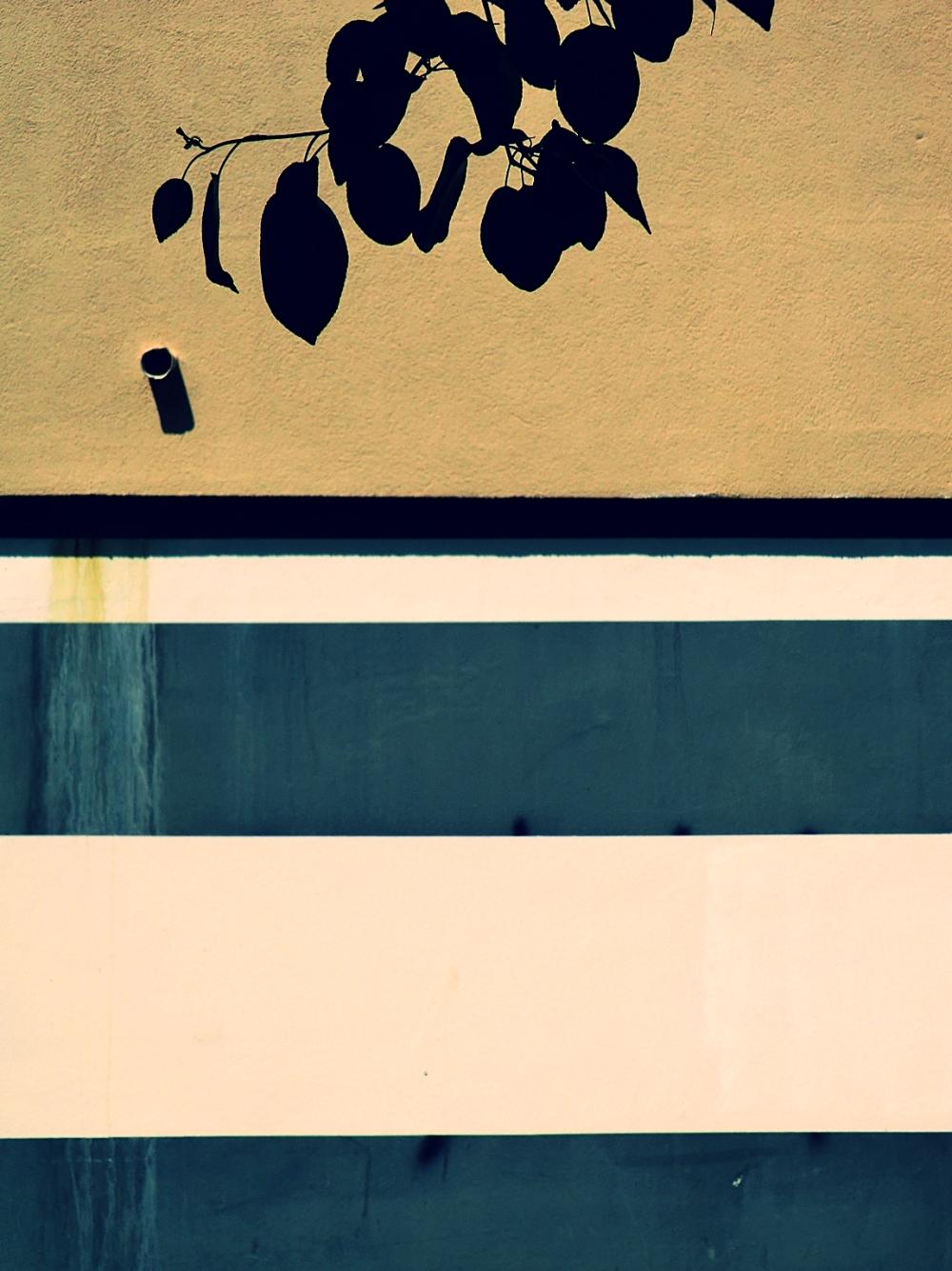 L'ombre de dessine à la craie de l'ardoise...