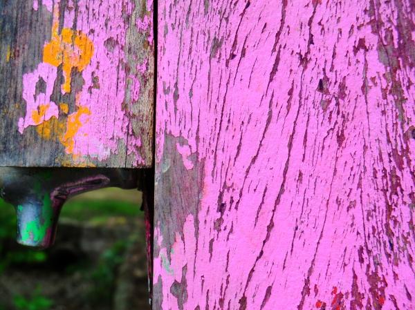 Une source de couleurs au mouvement de la nature