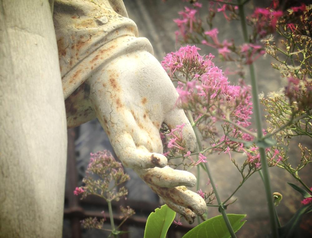 Une main qui s'ouvre à une nouvelle vie...
